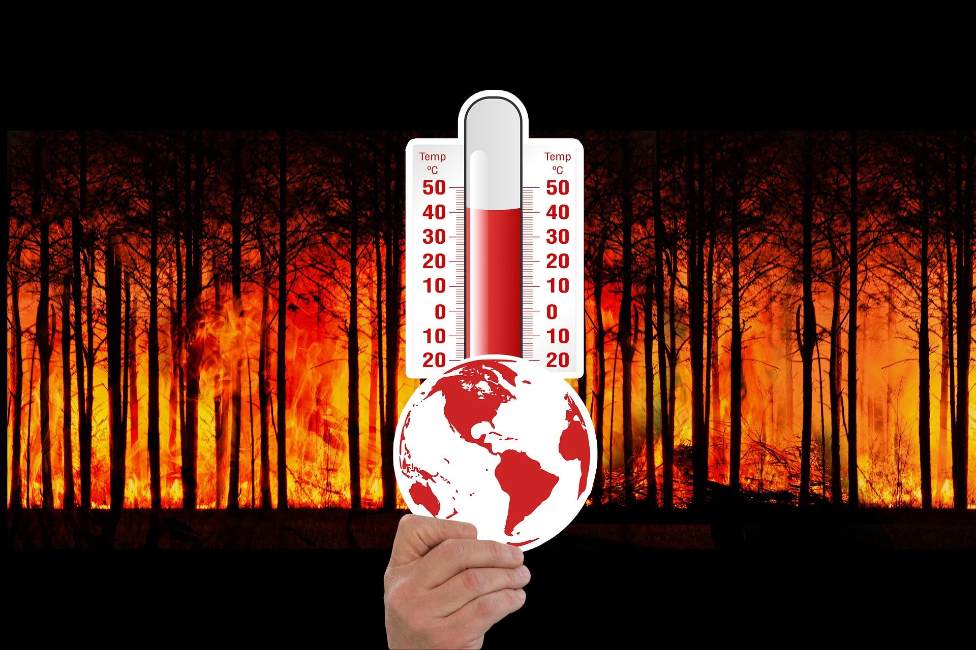 Telecamere termografiche per la rilevazione precoce di incendi