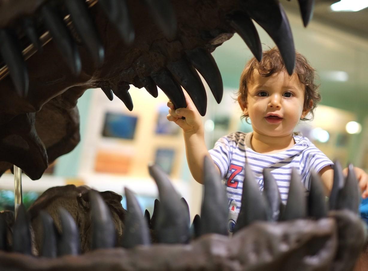 L'era dei dinosauri è già passata da un pezzo