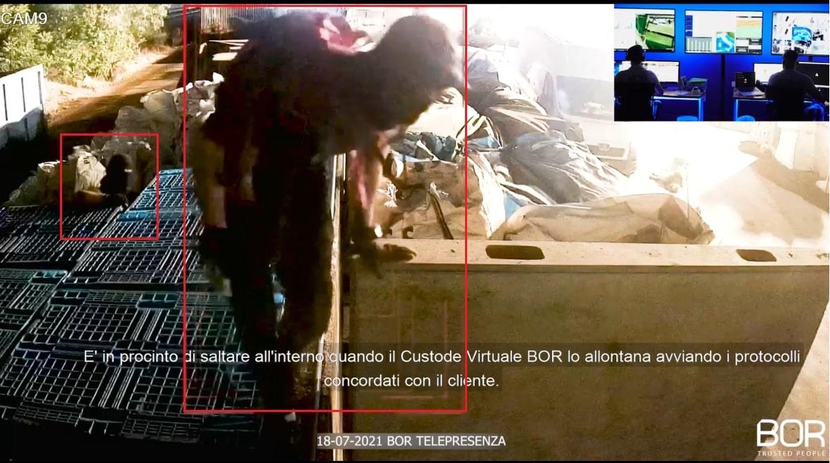 Intrusione dissuasa in tempi record presso un'azienda di Carinaro (CE)!